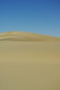 Mongolia 241
